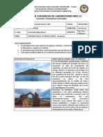 REGISTRO DE EVIDENCIAS DE LABORATORIO NRO 11.pdf