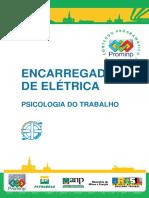 Enc Eletrica - Psicologia Trabalho.pdf