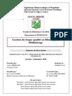 Memoire Version Finale - Gestion du risque qualité en Blistérage et Déblistérage.pdf