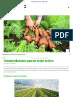 Recomendaciones para un mejor cultivo