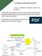 mattoni-biosintetici-e-siti-di-accumulo-dei-met-sec.pdf