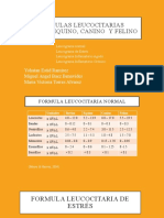 Formulas leucocitarias
