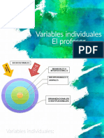 Variables individuales-profesor (1).