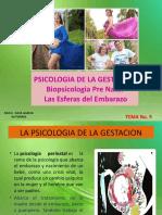 PSICOLOGIA DE LA GESTACIÓN