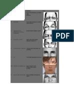 Resumen Unidades de Acción Facial (UAs) de Ekman.docx