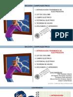 Fenómenos de electrización.pdf