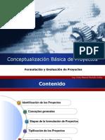 Conceptualización Básica de Proyectos.pdf