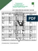Anexo 10-PLAN DE ESTUDIOS DEL PFC.docx