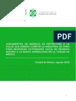 LINEAMIENTOS_CINES_.pdf