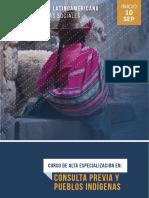Consulta_Previa_Y_Pueblos_Indígena-8463050