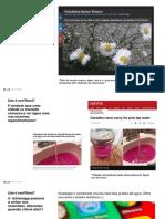 Fake-News_Desafio - respostas.pdf