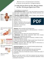 Lecture 11 - Copy.pdf