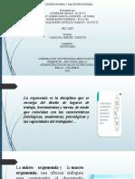 Macro- Micro Ergonomia