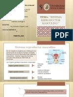 PRESENTACION_PAF_SRM.pptx