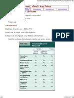 General Characteristics of Viruses