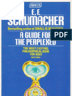 Schumacher_A_Guide_for_the_Perplexed