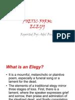 ELEGY report
