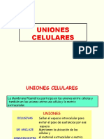 unionescelulares-140423084421-phpapp01