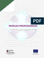 Perfiles_profesionales_FP_B.pdf
