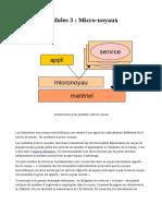 Micro_noyauV2
