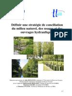 Memoire Universitaire Demange