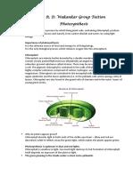 Photosynthesis Notes[5115].pdf