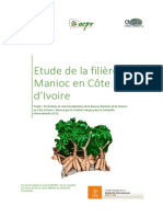 diagnostic_de_la_filiere_manioc_en_cote_d_ivoire_15_12_2015_final