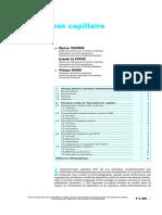 Eléctrophorèse Capillaire  THEORIE.pdf