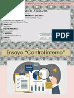 ENSAYO CONTROL INTERNO