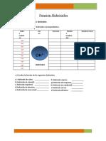 Erick Jean Paul TARAZONA SULCA - Ejercicios de Función Hidróxido y ácido hidrácido.docx