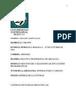 MARIA-KARINA-ULLUA-TP2-PRACT.PROFESIONAL-Autoguardado (1)