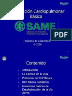 2 - RCP Basica