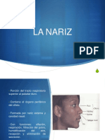 nariz-150408073152-conversion-gate01