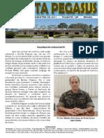 Revista Pegasus 15.pdf