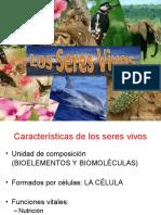 Caracteristicas y composicion de los seres vivos Actividades..ppt