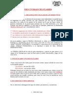 Estructuras-celulares.doc