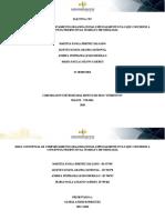 Electiva CPC - Mapa conceptual