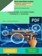 9. Concesiones-autorizaciones-permisos-y-licencias (1)-convertido-fusionado.pdf