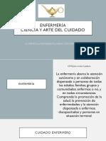 CONCEPTOS PAE.pdf
