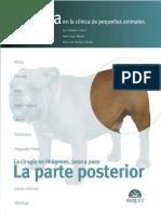 cirugia en la clinica de pequeños animales la parte posterior.pdf