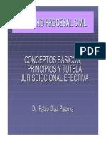 RELACION_PROCESAL principios y tutela jurisdiccional.pdf