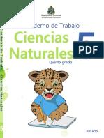 Cuaderno_de_Trabajo_V5p7pU4.pdf