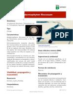 Epidermphyton floccosum