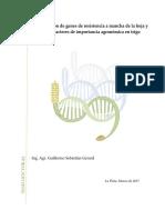 Gerard_Guillermo_Tesis.pdf-PDFA-U.pdf
