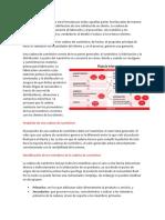 estructura de la cadena de suministros.docx