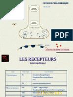 3 Sna PS.pdf