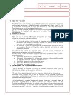 Borrador1 Formato CNP Seguridad Fisica