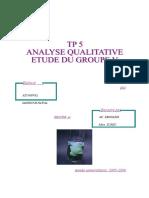 analyse qualitative5.doc
