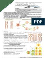 Guía 8 RVM (III Periodo) Biología