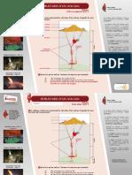 FP_1erDeg_Volcans_StructureVolc.pdf